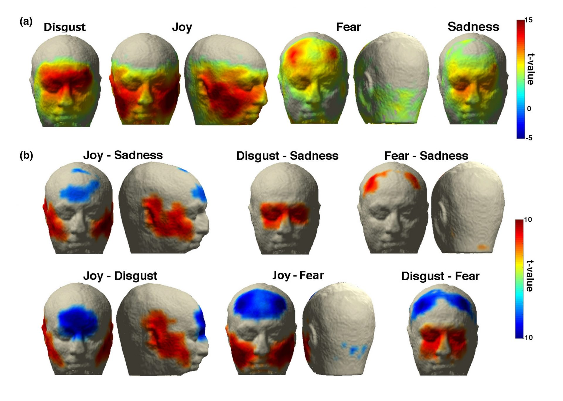 A novel approach to monitor face and whole head muscular activity