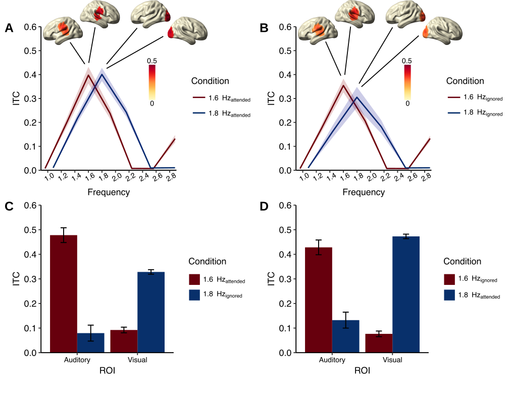 Differential attention-dependent adjustment of frequency, power and phase in primary sensory and frontoparietal areas